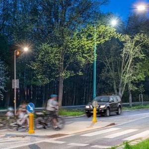 Система безопасных пешеходных переходов